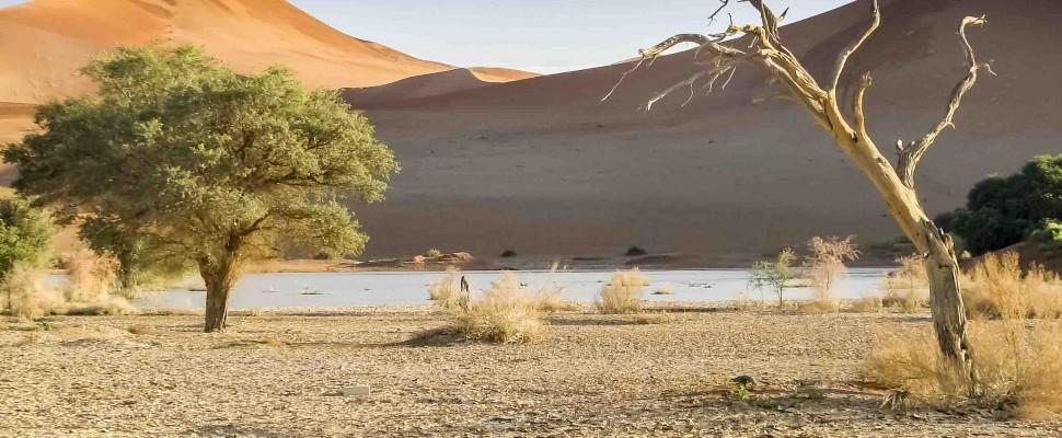 Namibia – atemberaubende Einsamkeit